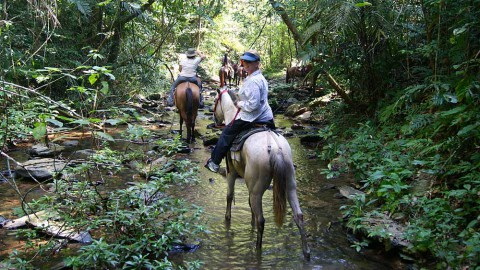 horseback_riding_lrg